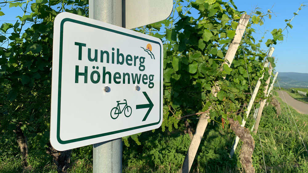 Orientierungsschild Tuniberg Höhenweg vor Reben